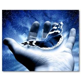 Αφίσα (χέρι, πεταλούδα, σύμπαν)